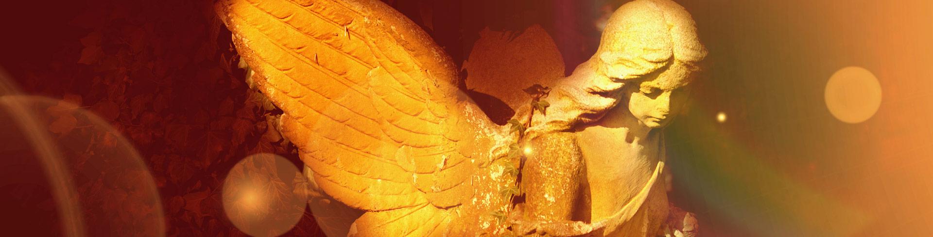 welp-bestattungen-beerdigung-oldenburg-4